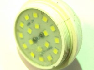 Cool White Flat Cap 60v LED Lamp