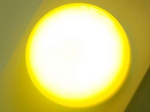 Yellow Flat Light Cap