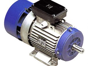 0.25kW MGM 1000rpm Three Phase Brake Motor